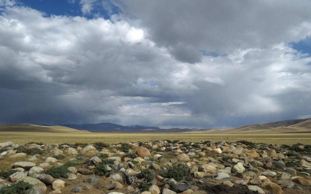 Chuya Steppe