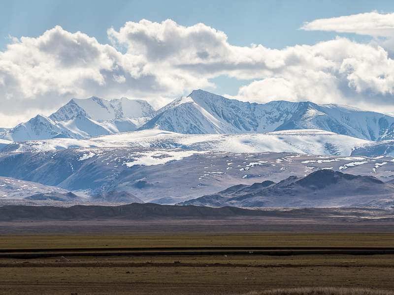 Kurai steppe in May