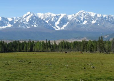 North Chuya ridge in Kurai Steppe