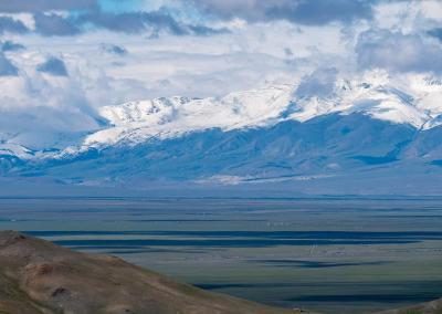 Chuya steppe green